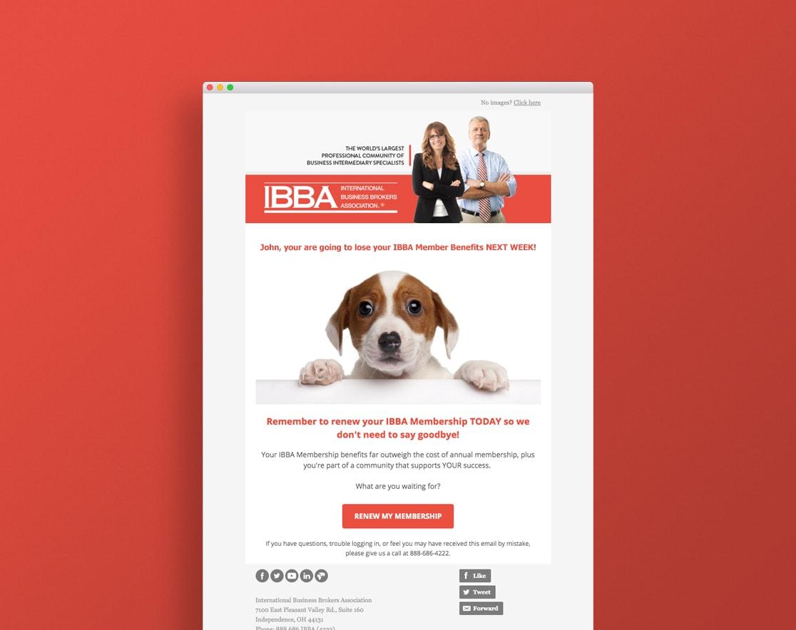 IBBA membership ending email, renew membership
