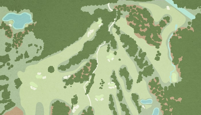 golf course aerial view illustration
